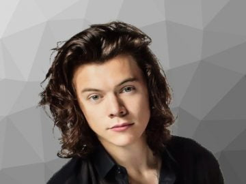 Harry Styles religion political views hobbies net worth